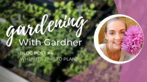 Gardening With Gardner: When It's Time to Plant