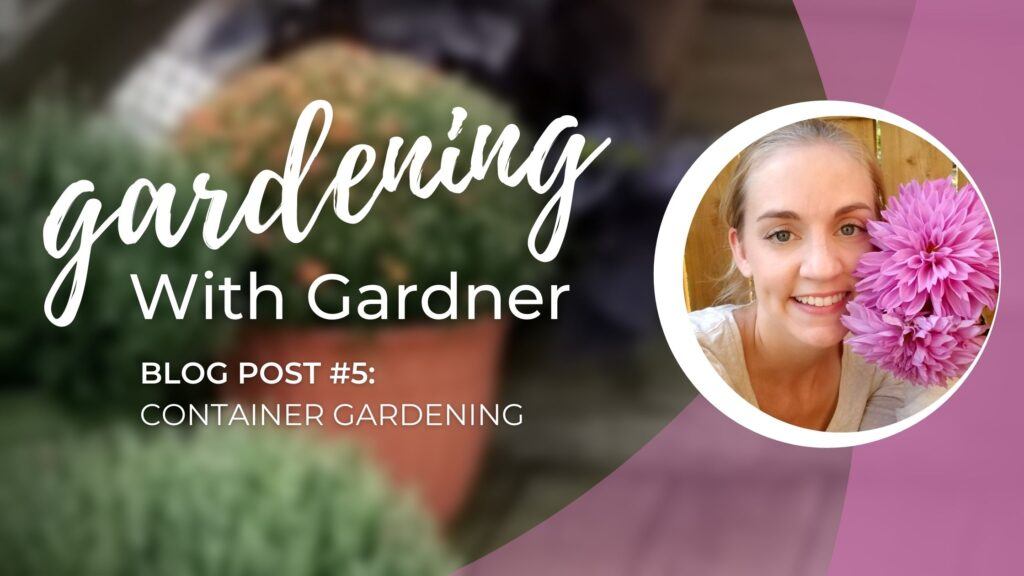 Gardening With Gardner: Container Gardening