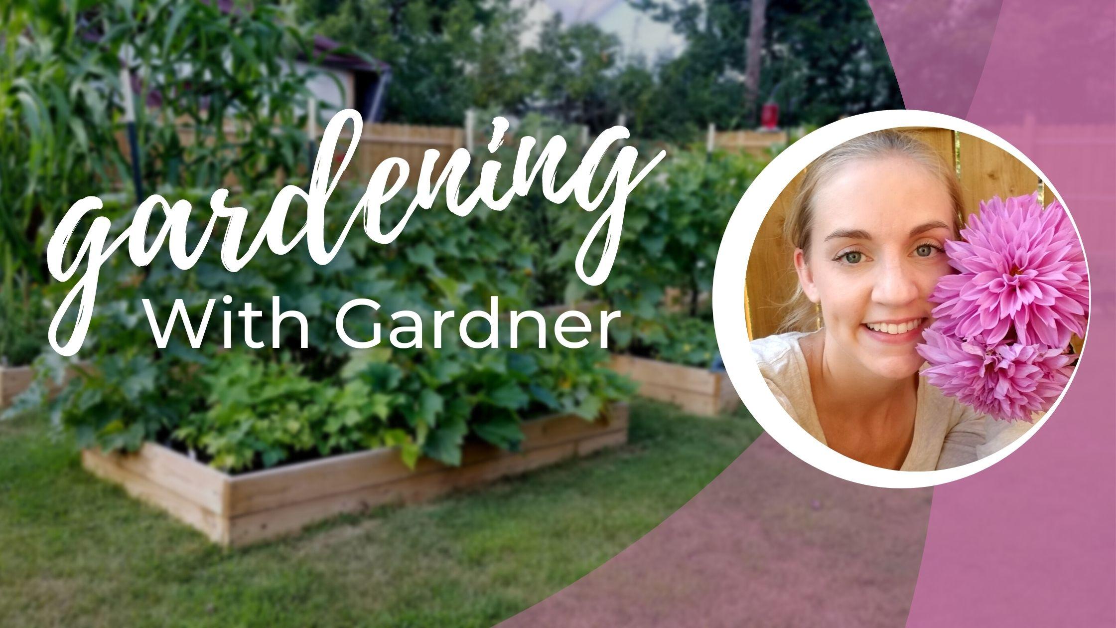 Gardening with Gardner: In My Own Garden